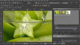 Texturing A Fruit With Mari 2.0 - Tip Of The Week