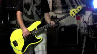 Anti-Flag- If You Wanna Steal (You Better Learn How To Lie)(Bass Cover)