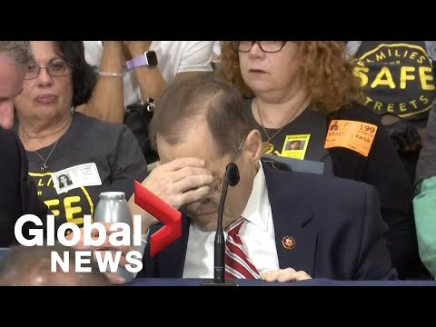 U.S. Congressman Jerry Nadler appears to pass out in New York