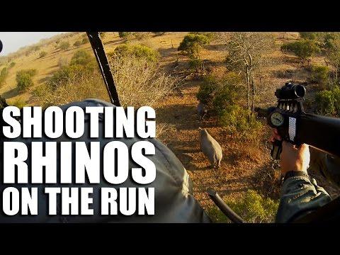 Shooting Rhinos on the Run