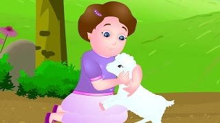 Mary Had A Little Lamb | Nursery Rhymes for Children