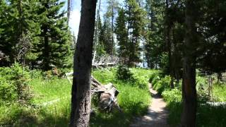 Trip video of Storm Point Nature Trail