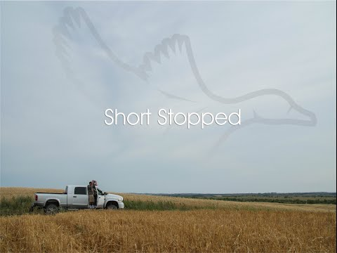 """HW 3.1: """"Short Stopped"""""""