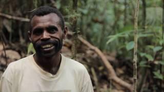 Manggroholo-Sira, Hutan Desa Pertama di Papua
