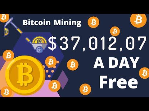 Kiek bitcoin adresų yra