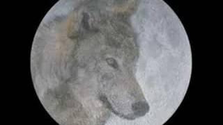 rainbow~wolf to the moon