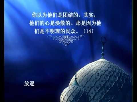 سورة الحشر - الشيخ / سعد الغامدي - ترجمة صينية