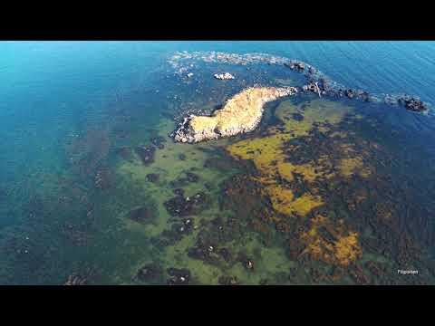 Остров Дюанка (Ванинский район, Татарский пролив)