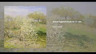 Grandes études de Paganini, S. 141