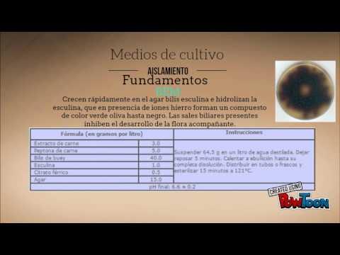 Antibacterial agent for treatment of prostatitis