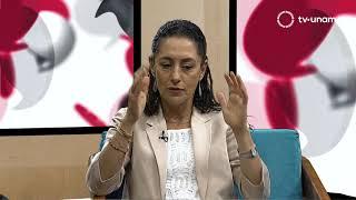 Diálogos por la democracia. Alternancia política y democracia en la Ciudad de México