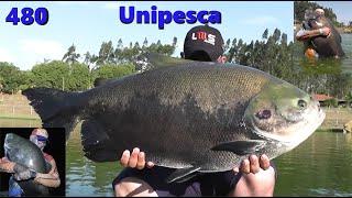 Final de tarde no Unipesca - Fishingtur na Tv 480