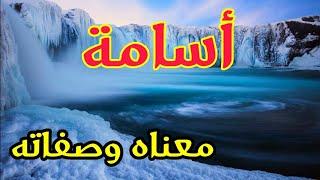 معنى اسم أسامة و صفات حامل هذا الإسم !!
