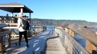 Nisqually Wildlife Refuge Hike
