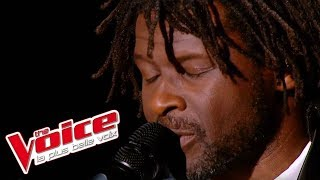 Johnny Nash – I Can See Clearly Now | Emmanuel Djob | The Voice France 2013 | Prime 3