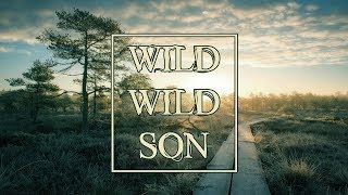 Armin van Buuren feat. Sam Martin - Wild Wild Son (Richard Durand Remix) [ASOT850 Bangkok, Thailand]