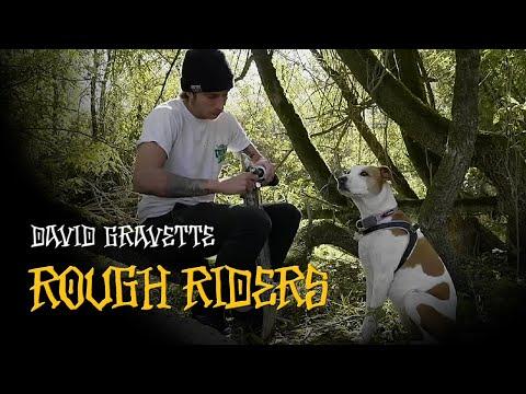 BONES WHEELS - DAVID GRAVETTE - ROUGH RIDERS