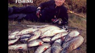 Отчеты с рыбалок на рыбинском водохранилище