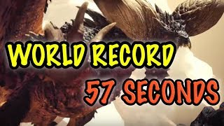 "0""00""57 Nergigante 
