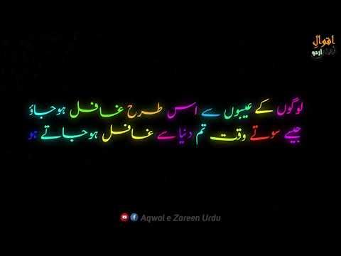 Imam Ali R.A Kay Aqwal E Zareen in Urdu - Golden Words in Urdu