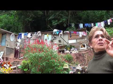 O Sofrimento na Favela e embaçado , Dona Conceição vive agoniada com o risco da árvore cair a qualquer momento na sua casa , agora pergunta se alguém faz alguma coisa na kebrada