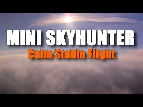 miniskywalker--calm-stable-flight-fpv