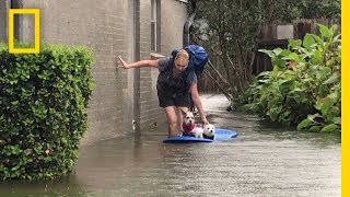 Watch Photographer Evacuate Mom and Dogs From Harvey's Devastating Flooding | National Geographic