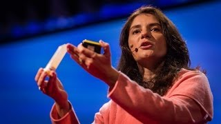 What is so special about the human brain? | Suzana Herculano-Houzel
