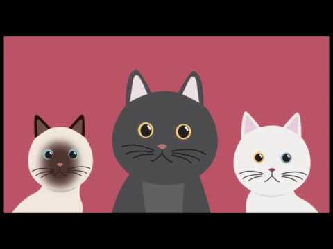 รูปภาพหนอนแมว