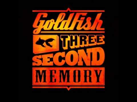 Afrique du Sud - Goldfish - Followers of the beat