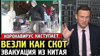 КАК СКОТ ВЫВЕЗЛИ ИЗ КИТАЯ. Алексей Навальный про Коронавирус.
