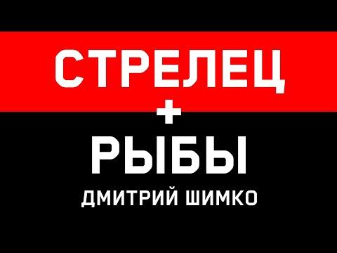 СТРЕЛЕЦ+РЫБЫ - Совместимость - Астротиполог Дмитрий Шимко
