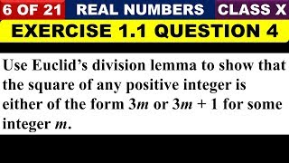 06 || Question 4 of Exercise 1.1 Chapter 1 Real Numbers Class 10 Maths