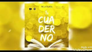 The La Planta   Tu Cuaderno
