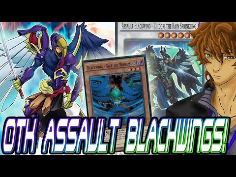 OTK ASSAULT BLACKWINGS! BEST WAY TO RUN NEW BLACKWINGS! | YuGiOh Duel Links