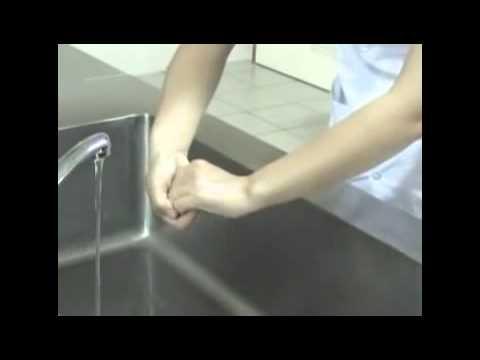 Dạy bé quy trình rửa tay 6 bước