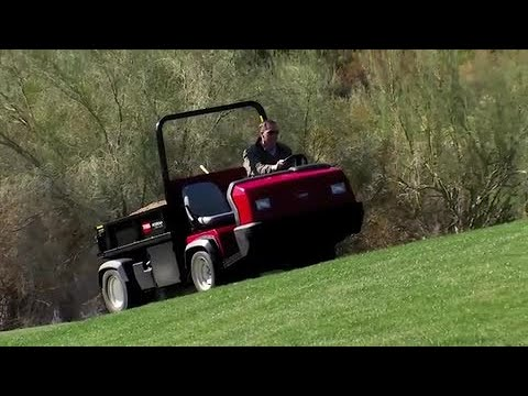 Toro® Heavy-Duty Workman® Automatic
