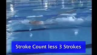 1 9 1 Stroke Count less 3 strokes