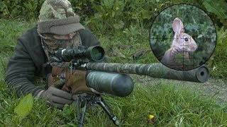 The Airgun Show – rabbit hunting with the Daystate Red Wolf, PLUS the FX Crown on test…