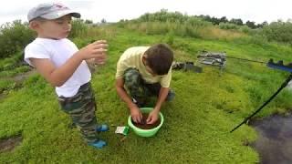 Исаакиевское озеро в орехово зуево рыбалка