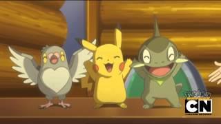 Opening 14 Pokémon Blanco y Negro (Español Latino)