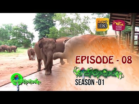 Sobadhara | Season - 01 | Episode 08 | Sobadhara Rupavahini