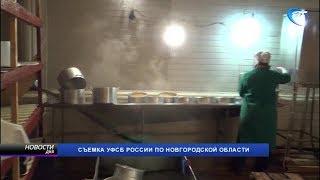 В деятельности рыбодобывающего предприятия Старорусского района обнаружены серьезные нарушения