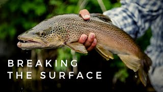Breaking The Surface: Dry Fly Fishing