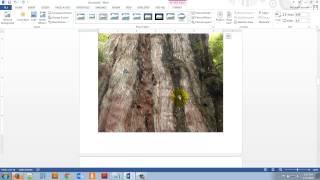 Microsoft Word 2013 Lesson