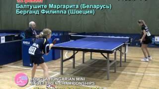Турнир Венгрия 2012 командное первенство
