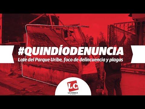 Lote del Parque Uribe, foco de delincuencia y plagas