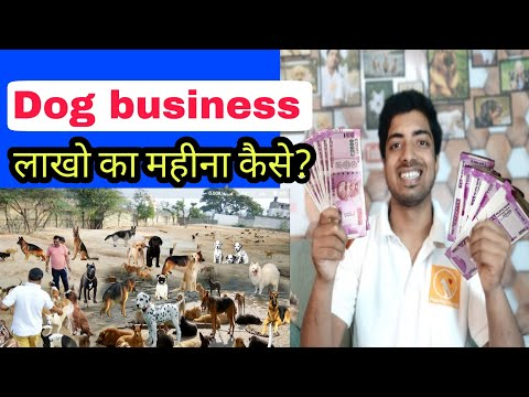 mp4 Business Ideas Dogs, download Business Ideas Dogs video klip Business Ideas Dogs