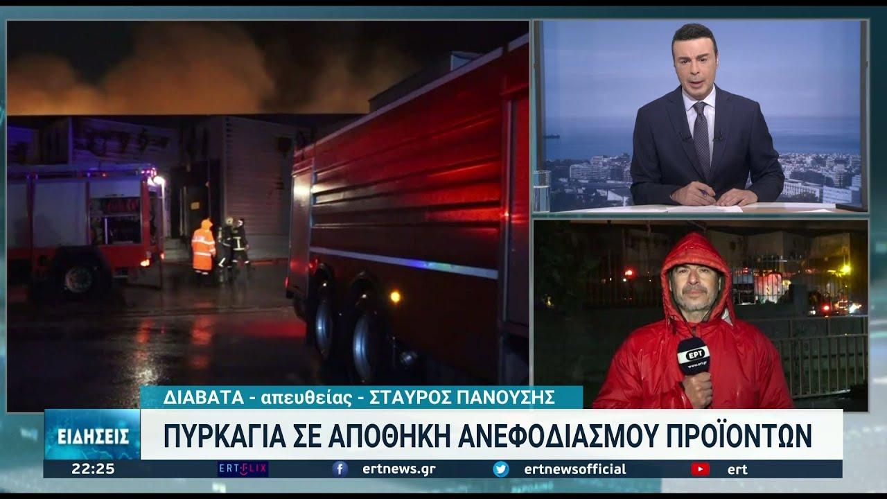 Μεγάλη φωτιά σε αποθήκες στη Νεοχωρούδα   14/10/2021   ΕΡΤ
