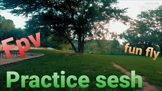 Roll the bones/ Practice sesh / fpv freestyle